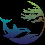 Sea to Tree Health & Wellness